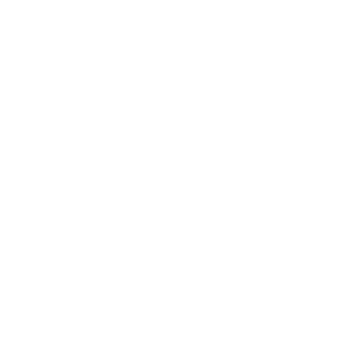 kidspeople the entertainer logo corporate events